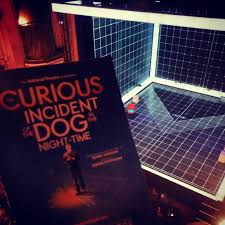 the curious incident of the dog in the night time theatre in london