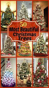 most beautiful trees beautiful trees beautiful decorated