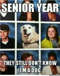 Senior Year Meme - senior year by dj magic meme center
