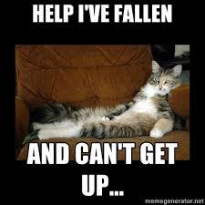 Help I Ve Fallen Meme - help i ve fallen and can t get up funny pinterest life alert