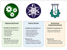 dissertation topics in biotechnology msc biochemical engineering pgt stream diagram
