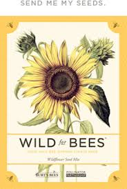 wildflower seed packets free pack of wildflower seeds from burt s bees money saving