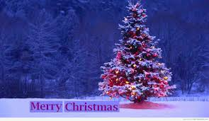 Merry Christmas Meme Generator - merry christmas meme generator christmas best of the funny meme