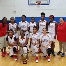 florida vipers fl ladyvipers