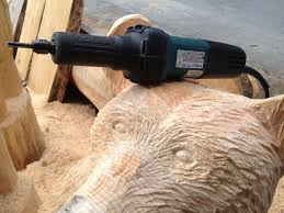 world wide chain saw carving u0026 art forum carved eyes rather than