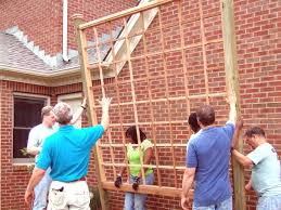how to build a sun fighting trellis how tos diy
