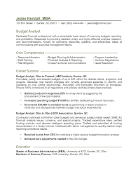 Business Analyst Sample Resume Finance by Business Analyst Resume Entry Level Resume For Your Job Application