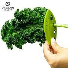 cuisiner le vert des blettes verts herbe romarin thym lâche feuille herbe kale blettes