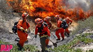 Ca Wildfire Training by Prison Inmates In California Fight Wildfires Youtube