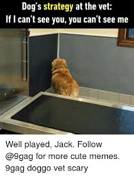 Dog At Vet Meme - dog s strategy at the vet if l can t see you you can t see me well