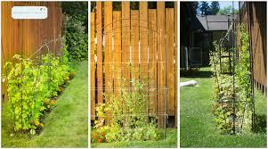 my garden reveal a project in progress humblebee farms