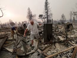 California Wildfires Burn Cars by Santa Rosa Fire How To Help Napa Sonoma After Wine Country Fires
