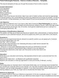 a simple resume exle pathologist resume sales pathologist lewesmr