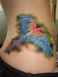 tattoo ideas for women parrot tattoo ideas tattoos pinterest