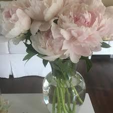 fresh cut flowers fresh cut flowers pink simplicity