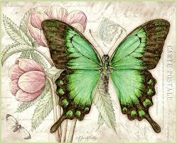 shasky butterflies december 2015 patterns