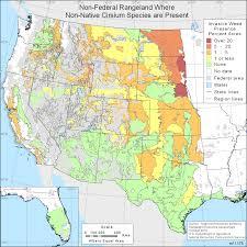 oklahoma native plants non native plant species nrcs
