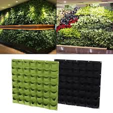 garden wall plants buy home u0026 garden mhyplace
