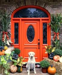home entrance ideas traditional curvy orange door for beautiful house entrance ideas