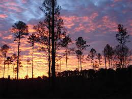 Mississippi Scenery images The best places to photograph in mississippi loaded landscapes jpg