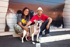 best friends animal society u0027s nkla pet adoption center celebrates