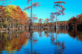 Louisiana landscapes images Louisiana landscape historic plantation country la best western jpg