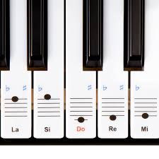 keysies do re mi solfege transparent plastic removable piano and