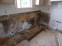 mold removal u0026 remediation experts in las vegas trs 24 7