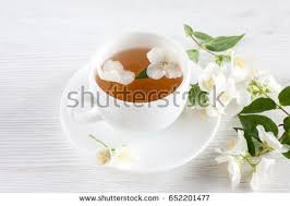 Jasmine Tea Flowers - jasmine tea flowers stock photo 104899499 shutterstock