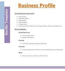 business profile template free download viplinkek info