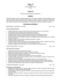 examples of resumes one job resume resumesample social worker