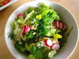 cuisine vivante pour une santé optimale l alimentation vivante de quoi s agit il ligne et minceur