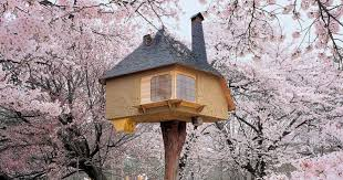 The 13 most amazing tree houses weve ever seen