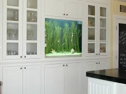 Home Design Rio Decor Home Aquarium Designs Everything You Wanted To Know About Loversiq