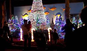 columbia holiday events to put on your calendar the state