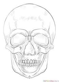 how to draw a human skull step by step drawing tutorials for kids