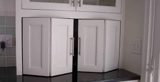 Kitchen Cabinets With Sliding Doors by Door Stylish Lenna Double Door Cabinet Outstanding Double Door