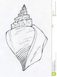 sea shell ink sketch royalty free stock photography image 36014957