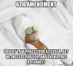 Speedy Meme - 6th amendment speedy trial face your accuser get witnesses for you