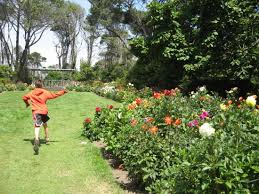Fort Bragg Botanical Garden Wedding Garden Picture Of Mendocino Coast Botanical Gardens