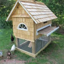 the chicken building our quail coop