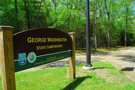 rhode island forest images George washington state campground jpg