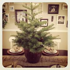 the vintage fern the all natural christmas tree