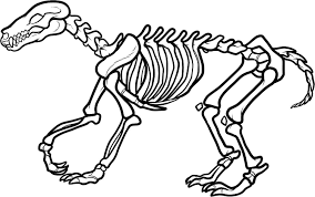 vintage clip art strange chameleon skeleton halloween the