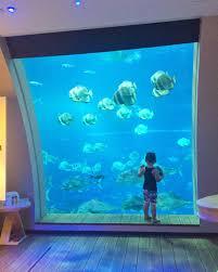 manta underwater hotel room in zanzibar man things pinterest