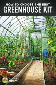 8 X 12 Greenhouse Kits 5 Best Greenhouse Kit That Will Protect Your Plants Against Winter