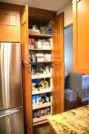 built in cabinets for sale kitchen pantry cabinets datavitablog com