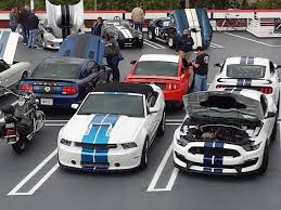 mustang madness mustang madness at the carroll shelby birthday cruise in