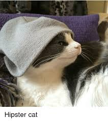 Hipster Cat Meme - hipster cat cats meme on me me