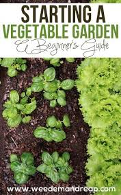 how to start a vegetable garden for beginners vegetable garden top 10 tips on starting your own 2018 update